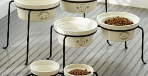 Ceramic Dog Bowls With Stand